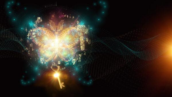 Ključ metulja